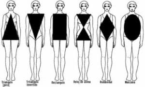 tipo de cuerpo